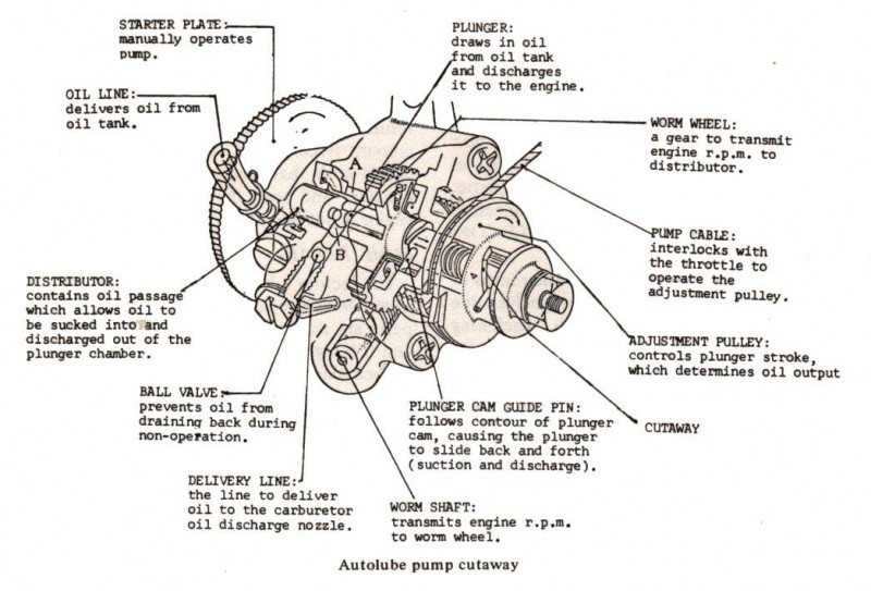 50cc 2 stroke scooter engine 50cc free engine image for user manual